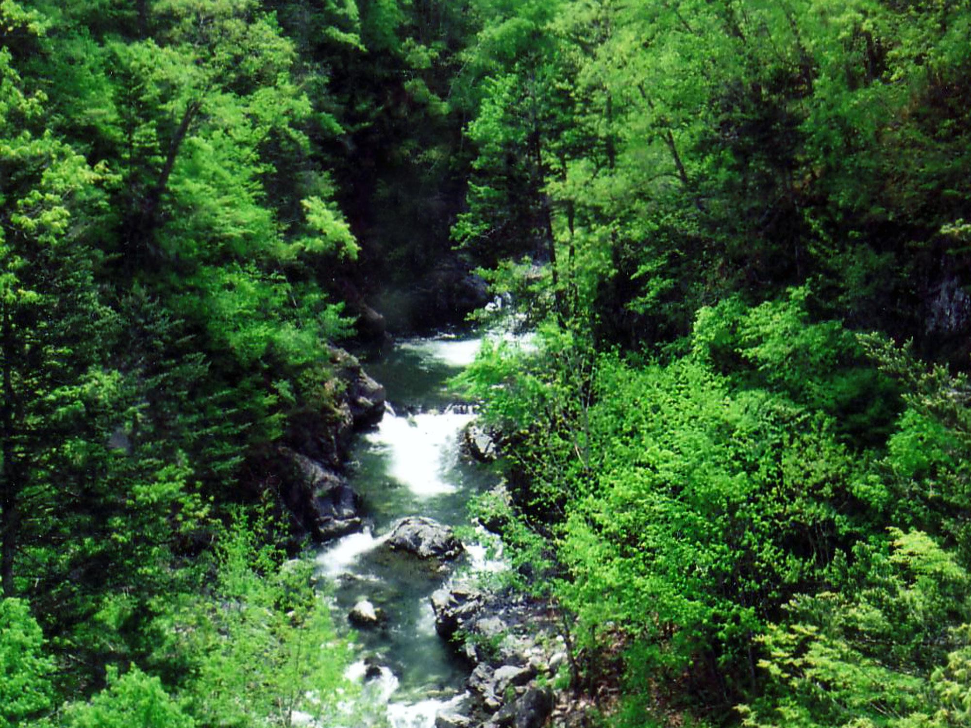 夏 の 写真 18 サイズ 640x480 夏 の 岩内 仙境